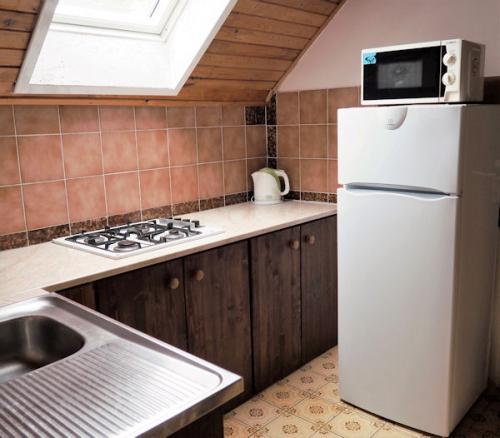 PA110179 - nova kuchyň